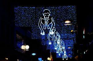 Glow Light festival Eindhoven Street Vieuw