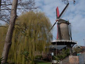 Working windmill in IJsselstein is a corn mill