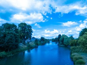 Cycling-in-Holland-on-the-dykes-along-the-river-Linge-passing-by-Beesd
