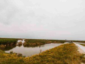 Nature Reserve Marker Wadden Open Landscape