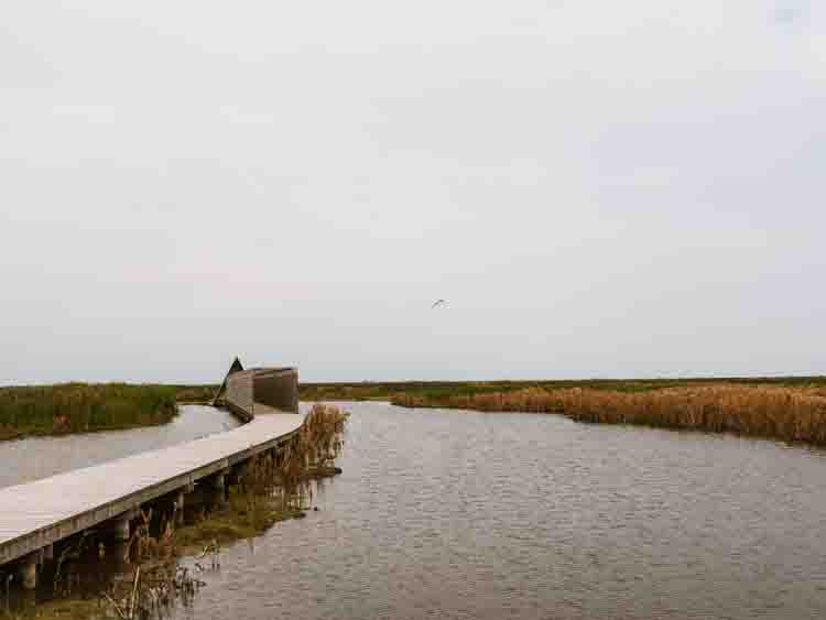 Nature Reserve Marker Wadden bird observation hut