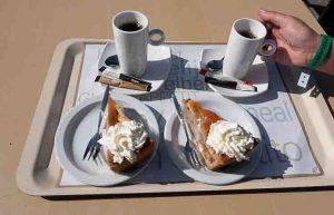 Rotterdam Beach and the Maeslantkering Coffee and pie